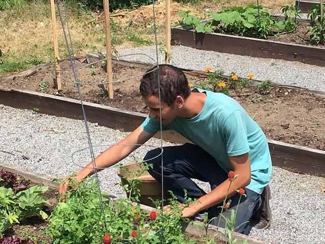 Building a Garden Building